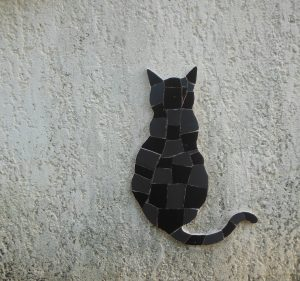 Chat noir et gardien de la maison